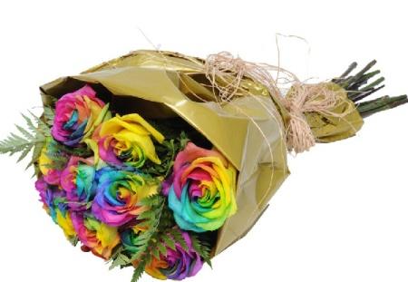 rosas multicoloridas
